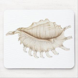 Concha Shell de la araña en cojín de ratón Mousepad