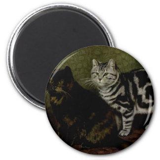 Concha Tom e ilustraciones grises del gato de Tabb Imán Redondo 5 Cm