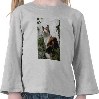 Concha y gato blanco camisetas
