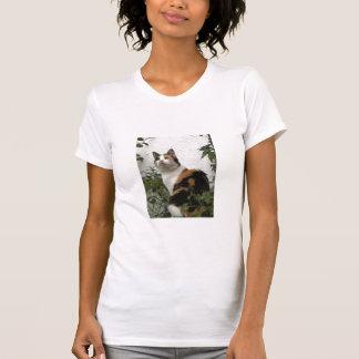 Concha y gato blanco camiseta