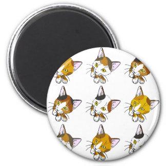 Conchas, gatos de tabby (三毛猫) imán redondo 5 cm