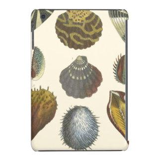 Conchology Collection iPad Mini Retina Covers