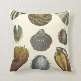 Conchology Collection Throw Pillow