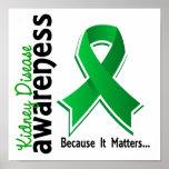 Conciencia 5 de la enfermedad de riñón poster