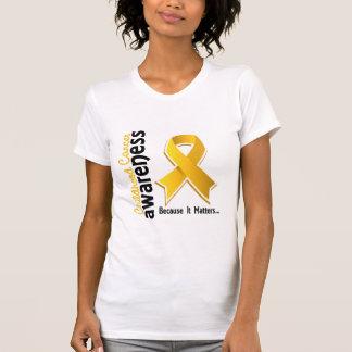 Conciencia 5 del cáncer de la niñez remera