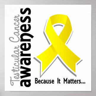 Conciencia 5 del cáncer testicular póster