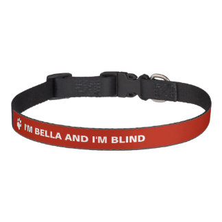 Conciencia ciega del perro con nombre de encargo collares para perros