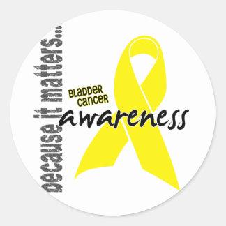 Conciencia del cáncer de vejiga pegatinas redondas