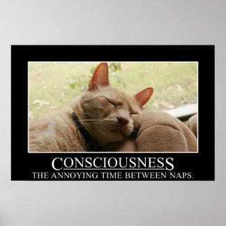 Conciencia: el tiempo molesto entre las siestas (s póster