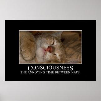 Conciencia: el tiempo molesto entre las siestas [X Póster