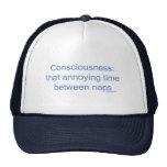 Conciencia: esa vez molesta entre las siestas gorra