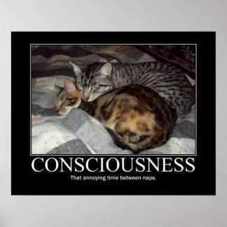 Conciencia. Esas ilustraciones molestas del gato d Póster