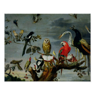 Concierto de pájaros impresiones