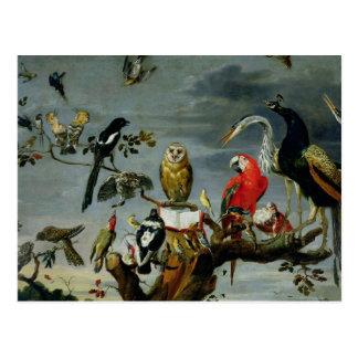 Concierto de pájaros postales