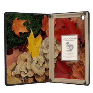 Concord, NH. Maple leaves and bracket fungus iPad Mini Case