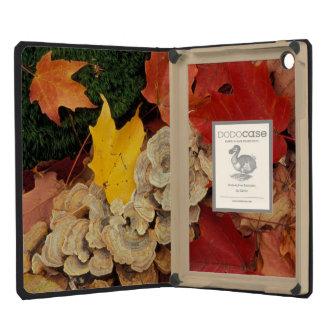 Concord, NH. Maple leaves and bracket fungus iPad Mini Retina Case