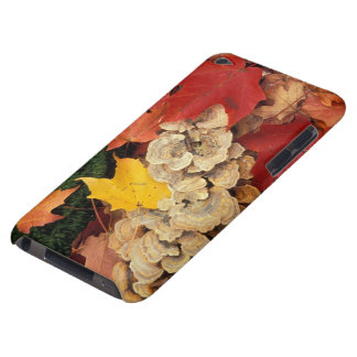 Concord, NH. Maple leaves and bracket fungus iPod Case-Mate Case