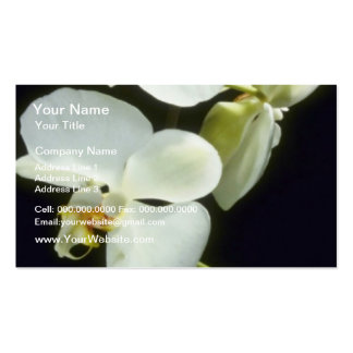 Concorde (Phalaenopsis) flowers Business Cards