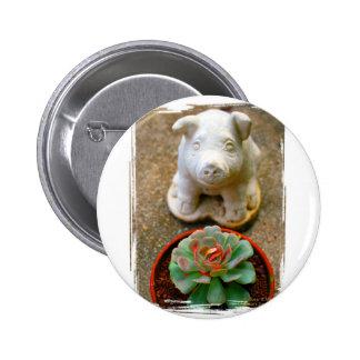Concrete Sitting Pig with succulent plant Pinback Button