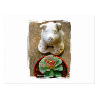 Concrete Sitting Pig with succulent plant Postcard