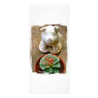 Concrete Sitting Pig with succulent plant Personalized Rack Card