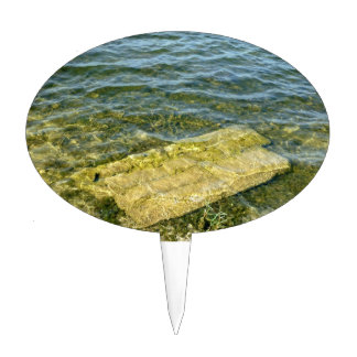 Concrete slab in pond cake toppers