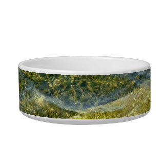 Concrete slab in pond pet bowls