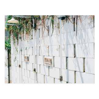 Concrete wall with vines hanging from top postcard