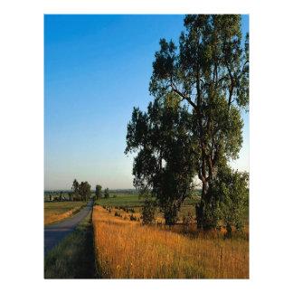 Condado de los granjeros del camino de la naturale plantilla de membrete