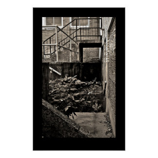 Condemned Building Series; Black and White Poster