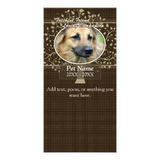 Condolencia de encargo del mascota del amigo fiel tarjeta fotografica