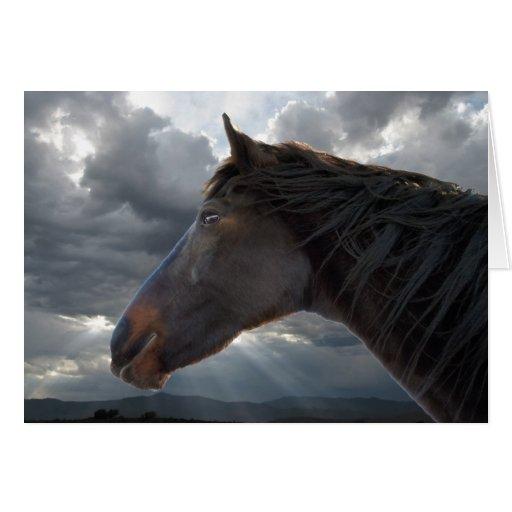 Condolencia de la pérdida del caballo tarjeta de felicitación