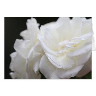 Condolencia de los rosas del iceberg tarjeta de felicitación