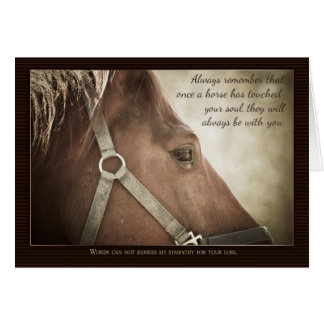 Condolencia del caballo con Niza palabras Tarjeta De Felicitación