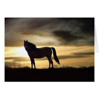 Condolencia del caballo tarjeton