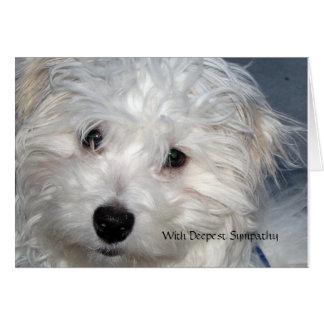 Condolencia del mascota - pérdida de un perro tarjeta de felicitación
