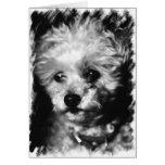 Condolencia del mascota - tarjeta de felicitación
