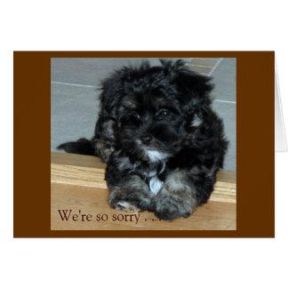 Condolencia del mascota tarjeta de felicitación