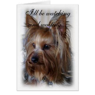 Condolencia del monumento del mascota tarjeta de felicitación