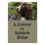 Condolencia del perro - puente del arco iris felicitación