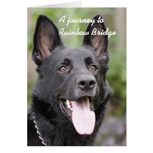 Condolencia del perro - puente del arco iris tarjeta de felicitación