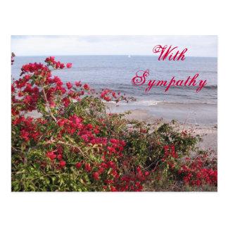 Condolencia Malibu Tarjetas Postales
