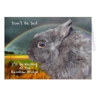 Condolencia para la pérdida de conejo del mascota tarjeta de felicitación
