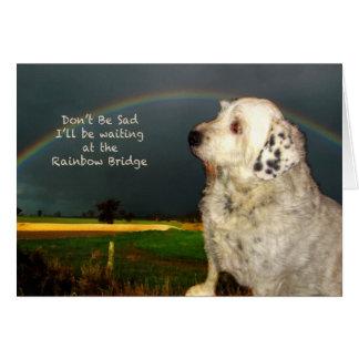 Condolencia para la pérdida de perro casero tarjeta de felicitación