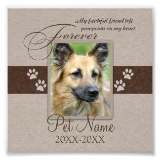 Condolencia para siempre amada del mascota cojinete