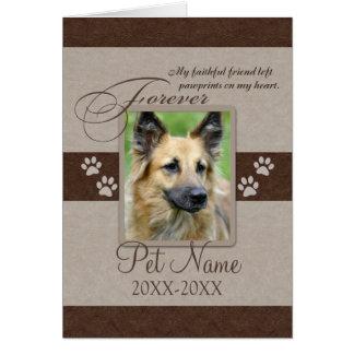 Condolencia para siempre amada del mascota tarjeta de felicitación