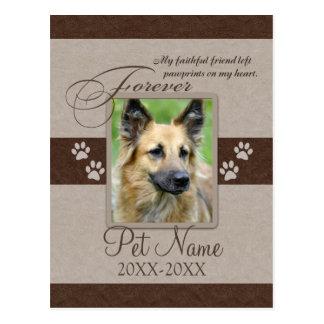 Condolencia para siempre amada del mascota tarjeta postal