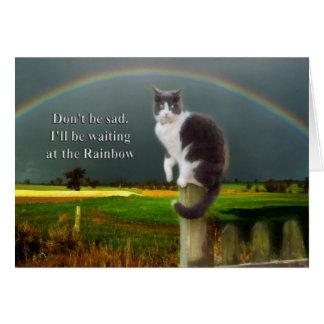 Condolencia - pérdida de gato del mascota tarjeta de felicitación