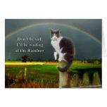 Condolencia - pérdida de gato del mascota tarjetón