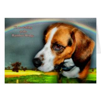 Condolencia - pérdida de perro casero tarjeta de felicitación